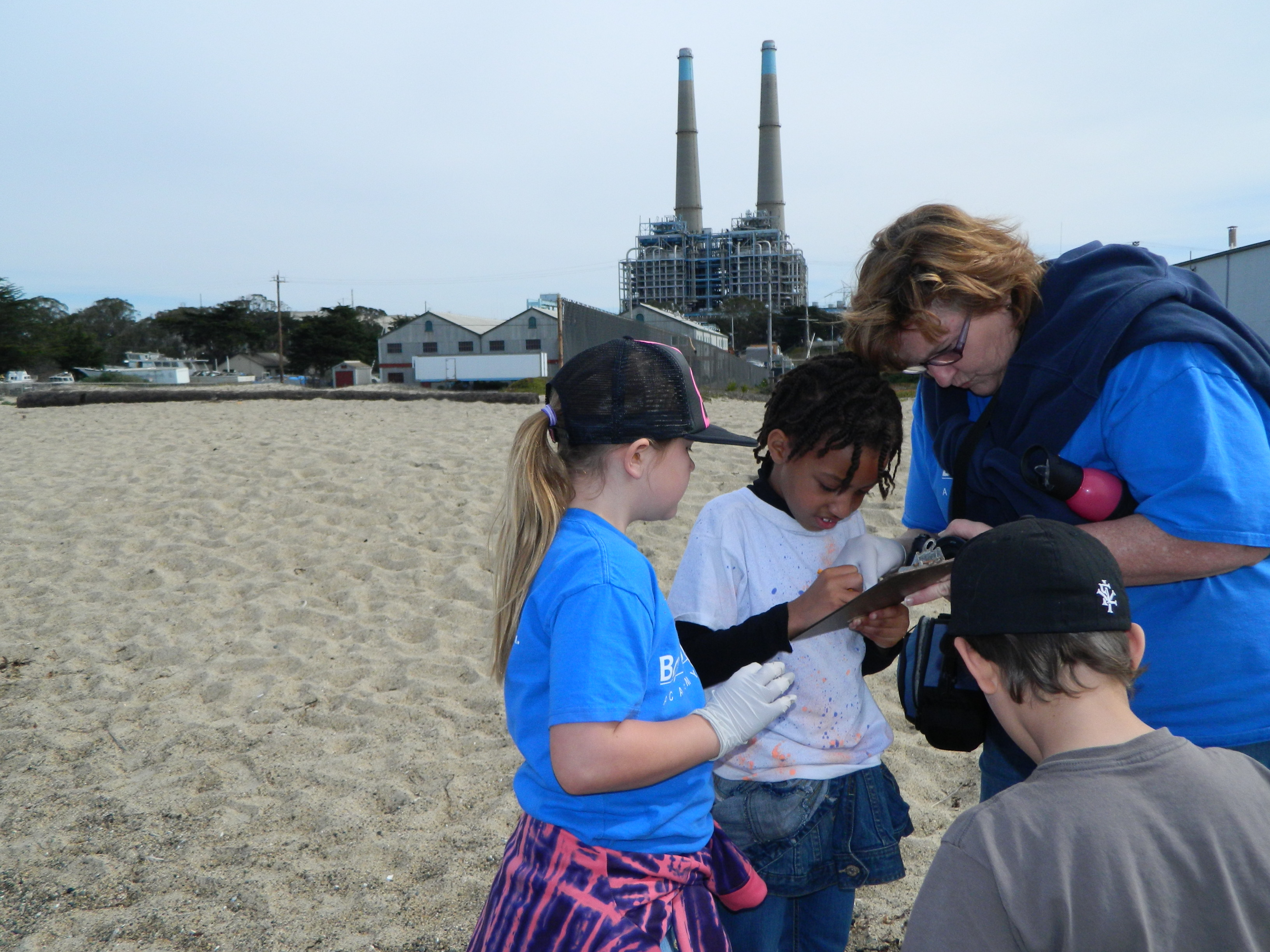 Sea lion stewards k 12 beach cleanup animal training research to sign up for sea lion stewards call 831771 4190 or e mail slewthsmlmllstate 1betcityfo Gallery